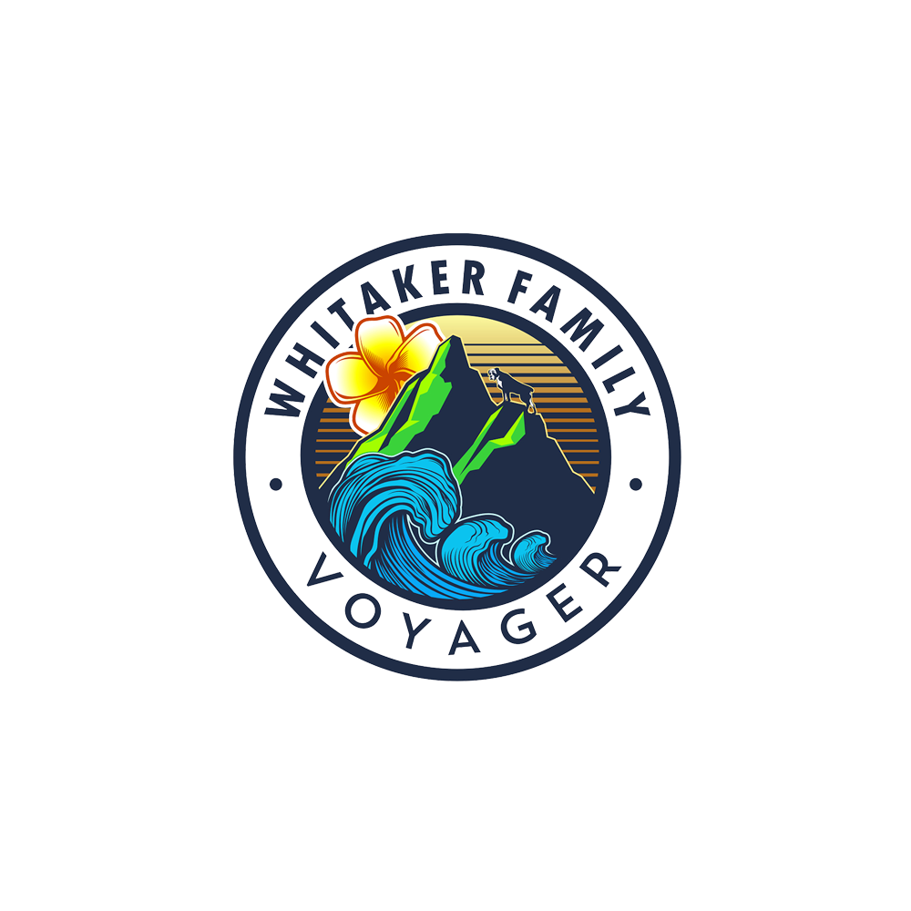 Logo design for VOYAGER by DORARPOL