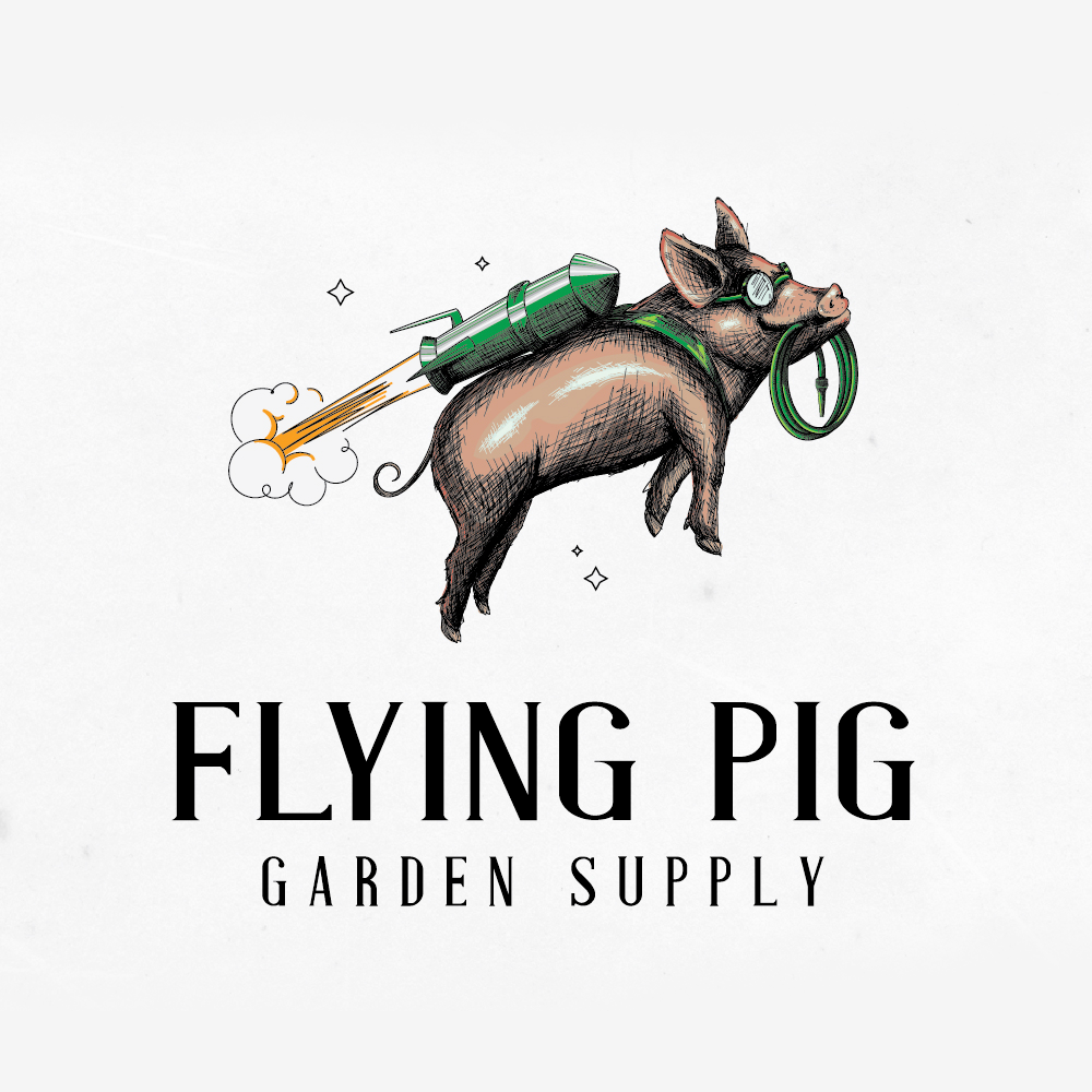 Logo design for Flying Pig by Mad pepper